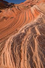 Landscape Coyote Buttes Paria Canyon-Vermillion Cliffs