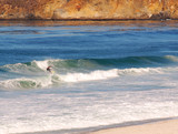 Surfer riding a breaker onto the beach poster