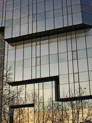 Modern office glass windows