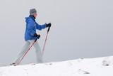 Winter nordic walking poster