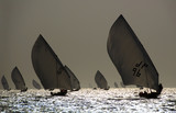 Silhouette Of Traditional Arabian Wooden Sailing Dhows poster