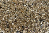 Sand grains for backgrounds