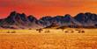 Colorful sunset in Namib Desert, Namibia.