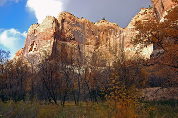 Escalante Cliffs with Fall Colors