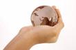 Globe in the hand