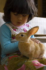 Adorable little girl talking to a rabbit