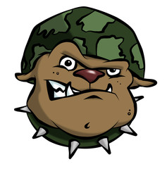 A mean bulldog in an army or military helmet.