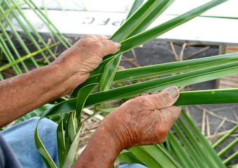 Man weavig baskets with palm fronds