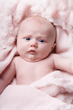 A blue eyed newborn portrait on a pink blanket poster
