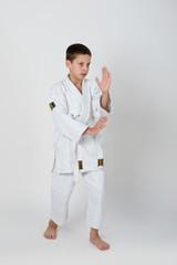 sport theme: young boy do aikido exercise
