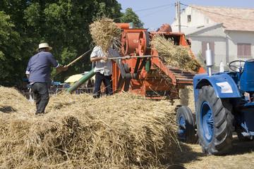 Agriculture et métier : les moissons des paysans d'autrefois