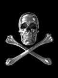 poison or toxic symbol chrome skull poster