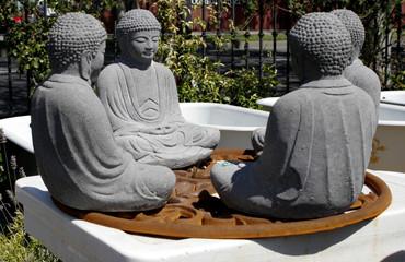 Buddha Board Meeting
