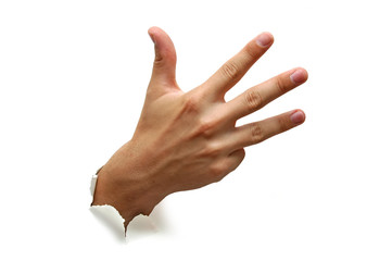 Hand counting four