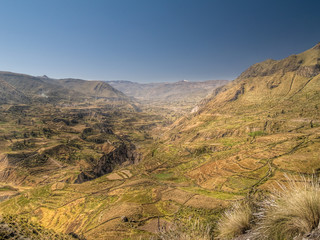 Panoramic view of the Colca Canyon. Peru
