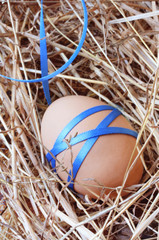 Easter egg tied with blue satin ribbon, on straw.