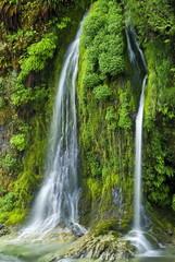 Salmon Creek Falls, Oregon.