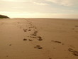 Footprints On Blackpool Beach
