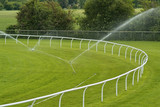 Sprinklers watering a lush green racecourse, poster
