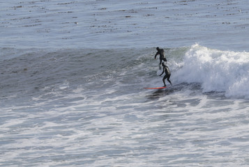 Surfer off of Point Santa Cruz in Northern California