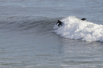 Surfer off of Point Santa Cruz in Northern CDalifornia
