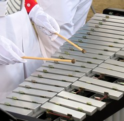 Vibraphone Player