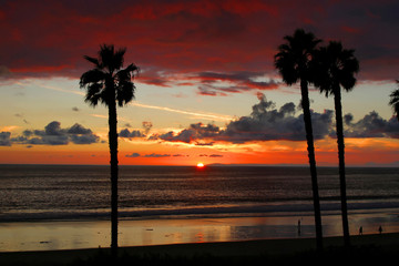 Sunset  San Clemente Pier with Palm Trees.