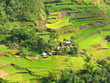 Ifugao Rice Terraces Village