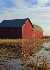 Red Barn with Reflection