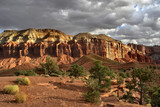 The well-known canyon of red rocks, clouds and a tree poster
