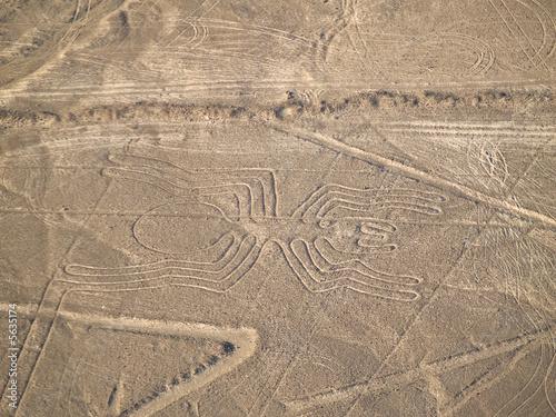 Nazca Lines Peruvian Desert - 5635174