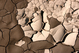 Close-up of dry soil in arid climate. Cracked ground. poster