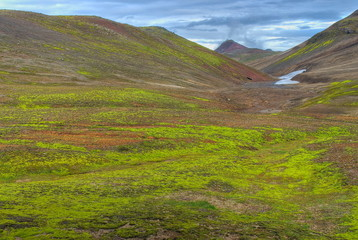 Green lush valley in Iceland