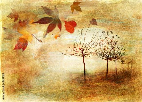 Zdjęcia na płótnie, fototapety na wymiar, obrazy na ścianę : autumn