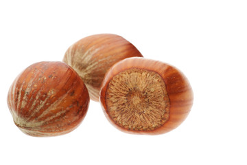 three hazelnuts isolated on white