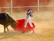 Bullfighter 4 - 5670559