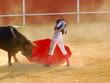 Leinwanddruck Bild - Bullfighter 4