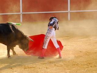 Bullfighter 4