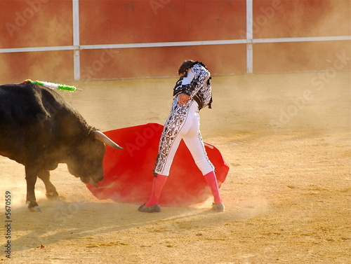 Leinwanddruck Bild Bullfighter 4