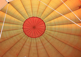 Inside a hot air balloon Masai Mara Kenya Africa poster