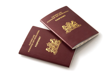 Dutch official passports