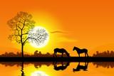 Cavalli al tramonto poster