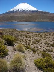 Vulkan Parinacota, Altiplano, Chile