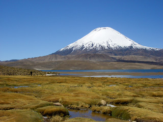 Vulkan Parinacota am Chungara See, Altiplano, Chile