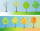 A tree depicted at different seasons poster