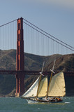 Tall ship sails by the Golden Gate Bridge in San Francisco Bay