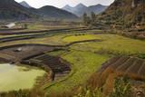 Chinese Peasant Working Fields, Guiyang, Guizhou, China poster