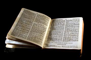 bible series leviticus
