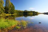 summer scene at lake Soodla, estonia poster