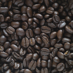 studio close up of hundreds of coffee beans